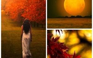 За что я люблю осень картинка